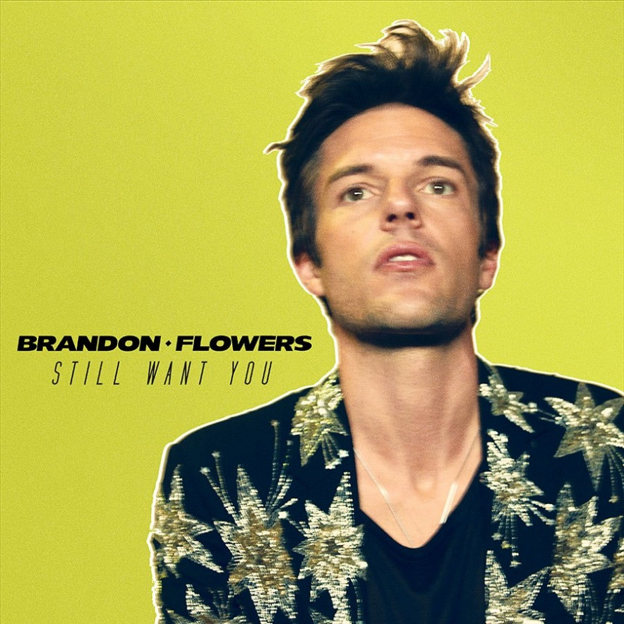 brandonflowers-still
