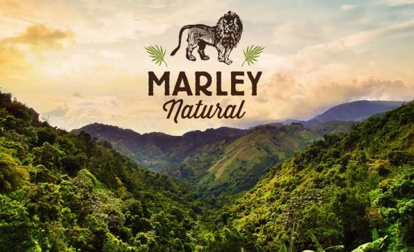 marley-natural-betraying-bob-and-jamaica-781-body-image-1416582663.0